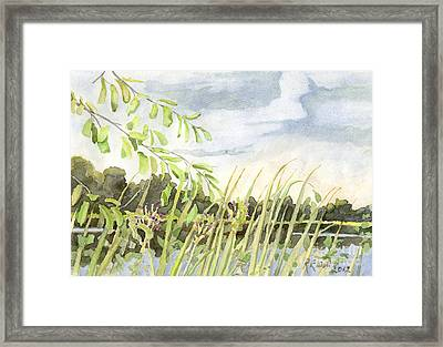 West Bay Napanee River Framed Print