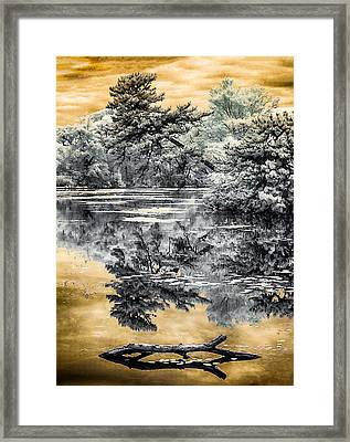 Framed Print featuring the photograph West Brook Pond by Steve Zimic