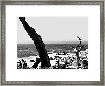 West Coast Framed Print by Camille Lopez