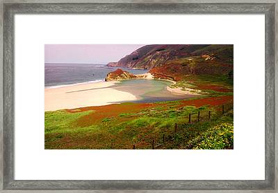 West Coast Fields Framed Print by Sharon Costa