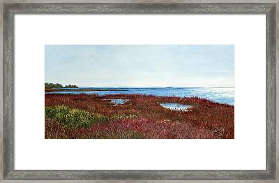 West Florida Panhandle Looking Towards The Gulf Framed Print