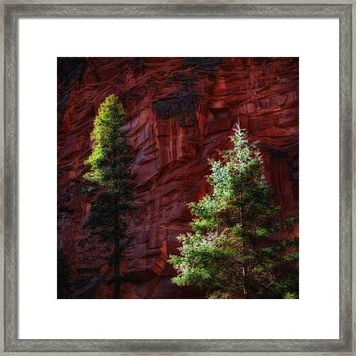 West Fork Rock Face Number Three Framed Print