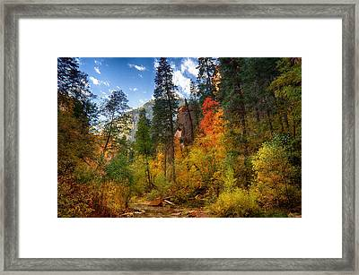 West Fork Wonders  Framed Print by Saija  Lehtonen
