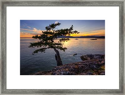 West From Juniper Point Framed Print by Alexis Birkill