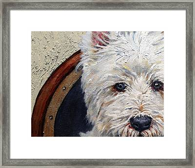 West Highland Terrier Dog Portrait Framed Print