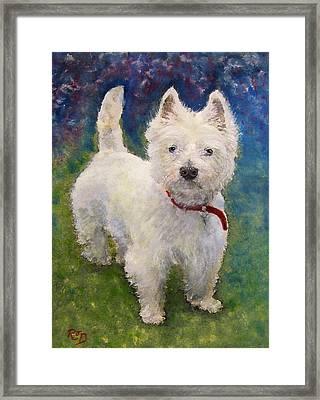 West Highland Terrier Holly Framed Print