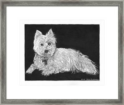West Highland White Terrier Framed Print