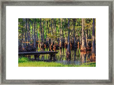 West Monroe Swamp Dock Framed Print