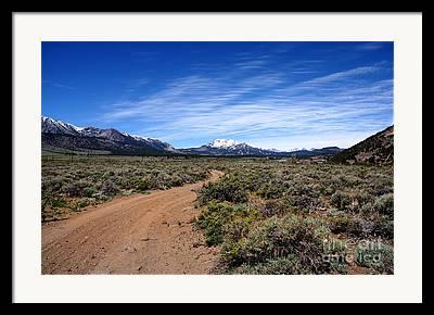 Park Of The Sierras Framed Prints
