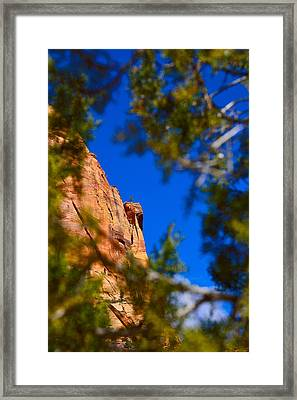 West Rim Trail Framed Print