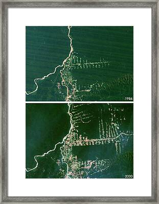 West Rondonia Framed Print