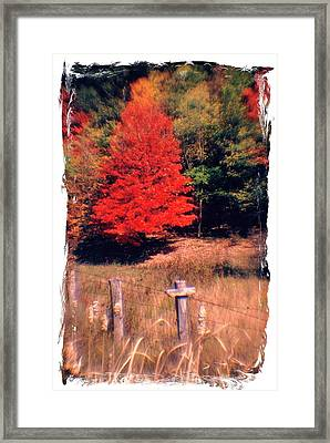 West Virginia Country Roads - Autumn Colorfest No. 1 - Germany Valley Pendleton County Wv Framed Print