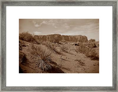 West006 Framed Print