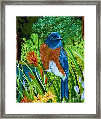 Framed Print featuring the painting Western Bluebird by Jennifer Lake