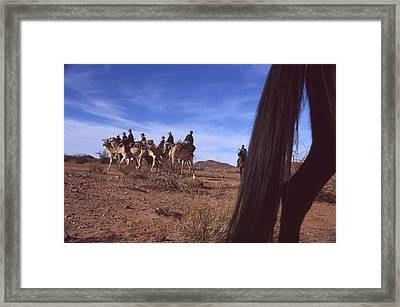 Western Cape Desert South Africa 1996 Framed Print by Rolf Ashby