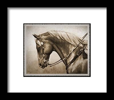Western Pleasure Horse Framed Prints