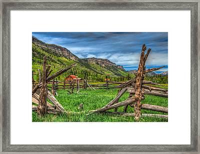 Western Solitude Framed Print