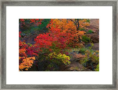 Framed Print featuring the photograph Westfork's Colors by Tom Kelly