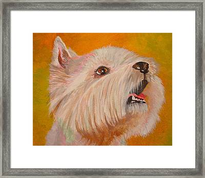 Westie Portrait Framed Print
