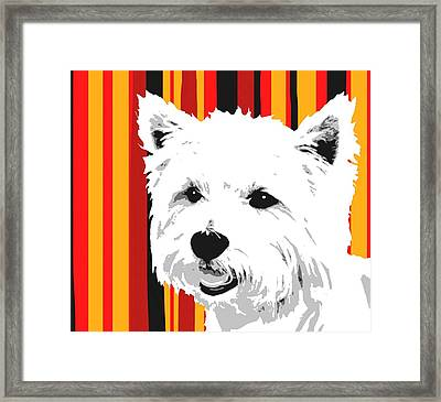 Westie With Stripes Framed Print by Cindy Edwards