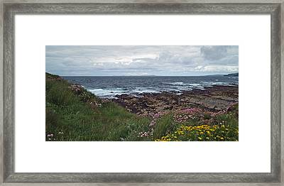 Westray Firth Framed Print by Steve Watson