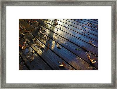 Wet Deck Framed Print by Brian Wallace