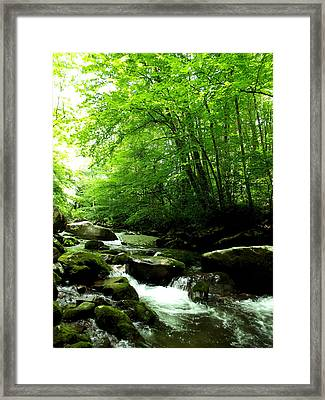 Wet Escape Framed Print by Russell Clenney