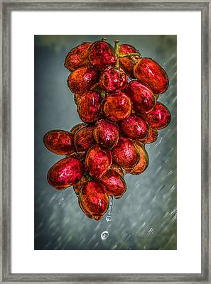 Wet Grapes Four Framed Print by Bob Orsillo