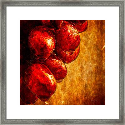 Wet Grapes Three Framed Print by Bob Orsillo