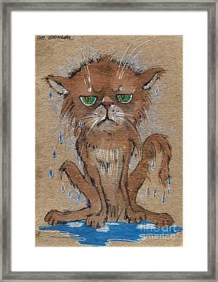 Wet Persian Cat Framed Print by Angel  Tarantella