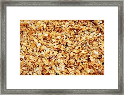 Wet Sawdust Framed Print by Carlos Caetano