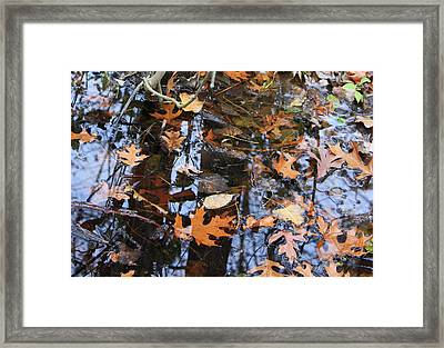 Wetland Reflections 12 Framed Print by Mary Bedy