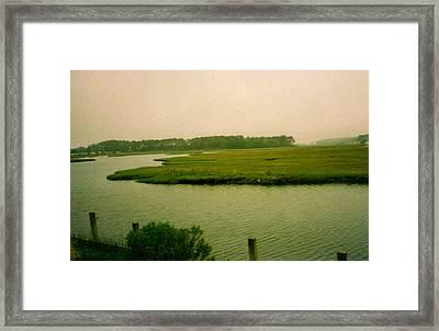 Wetlands Framed Print