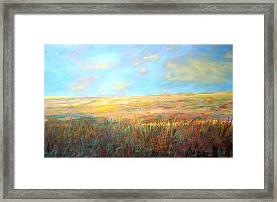 Wetlands/ As The Crow Flies Framed Print by Marilyn Hurst