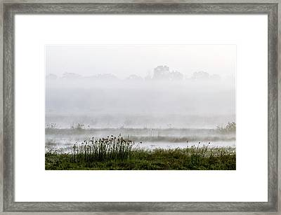 Wetlands In Mist Framed Print by K Jayaram
