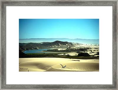 Wetlands In The Dunes Framed Print