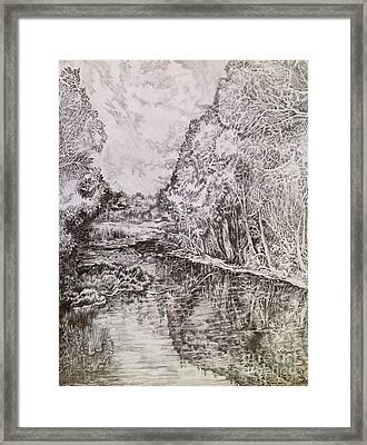 Wetlands Framed Print by Iya Carson