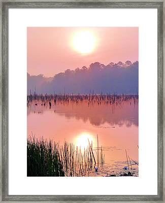 Wetlands Sunrise Framed Print by JC Findley