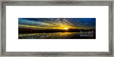 Wetlands Sunset Framed Print by Michael Cross