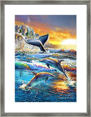 Whale And Dolphins Framed Print by Adrian Chesterman