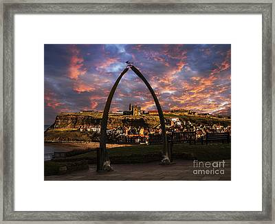 Whale Bones Of Whitby Framed Print by Sandra Cockayne
