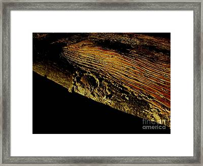 Whale On Stinson Beach 1 Framed Print