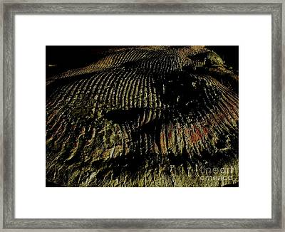 Whale On Stinson Beach 2 Framed Print