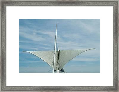 Whale Tail Framed Print by Devinder Sangha