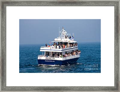 Whale Watching Boat Framed Print by Tim Holt