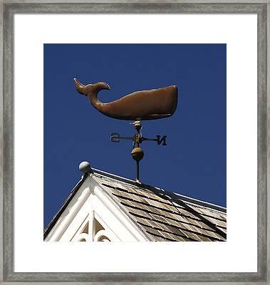 Whale Wind Vane Framed Print by David Lee Thompson