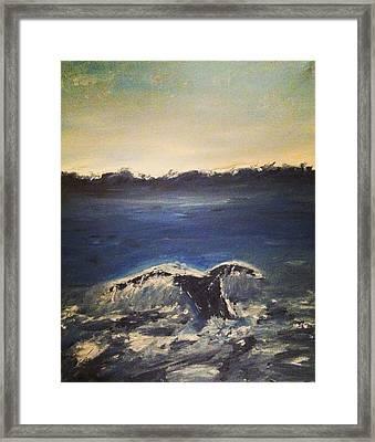 Whale Wonder Framed Print by Jessica Sanders