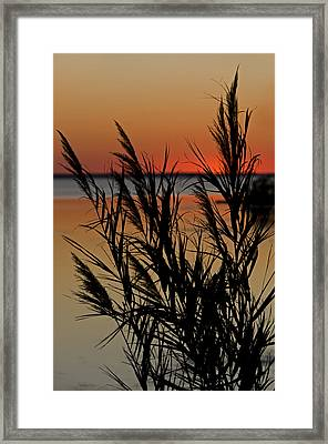 Framed Print featuring the photograph Whalehead Sunset Obx II by Greg Reed