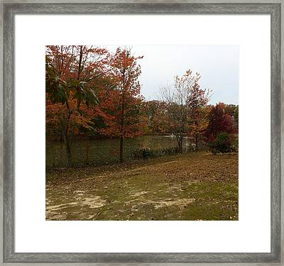 What A Beauitful Day Framed Print by Amazing Photographs AKA Christian Wilson