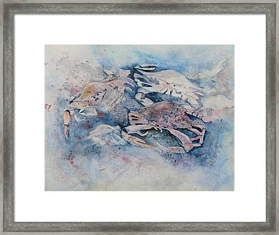 What A Crab Framed Print